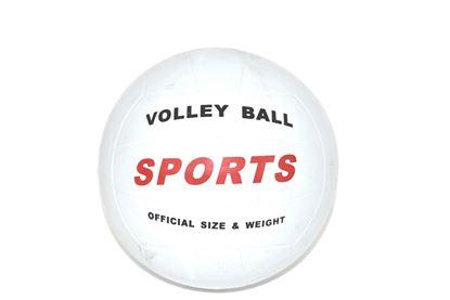 Foto de Balon #5 volleyball DP-0328/S90-04/RV-305